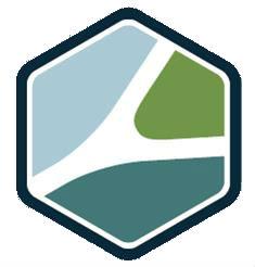 badge routier (2) (1012296)